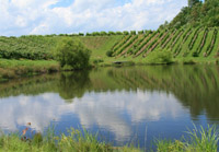 MountainRose Vineyard Lake